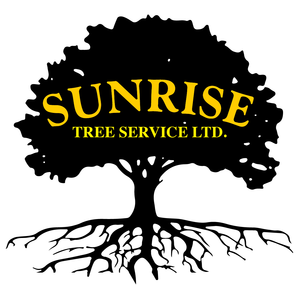 Sunrise_logo-BASE-01